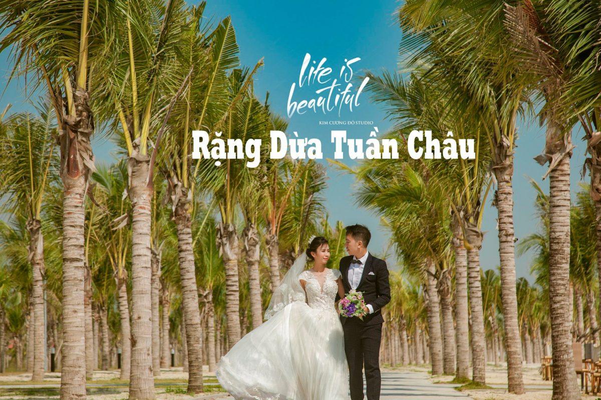 Cặp đôi chụp ảnh cưới tại Rặng dừa Bãi biển Tuần Châu